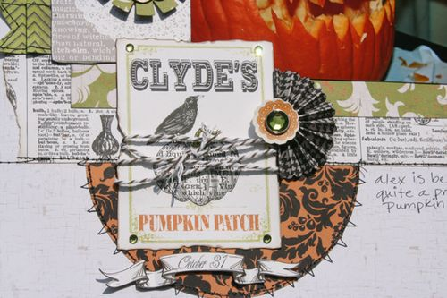Pumpkin-Pro-close