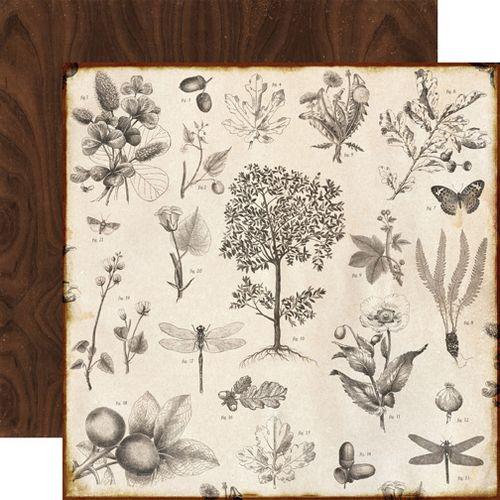 RE52002_Botanical