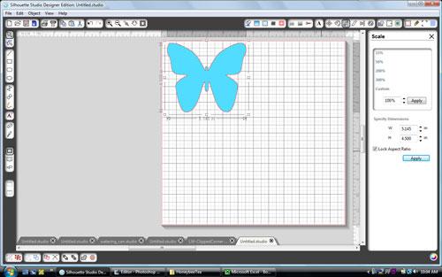 Corri_garza_butterfly1