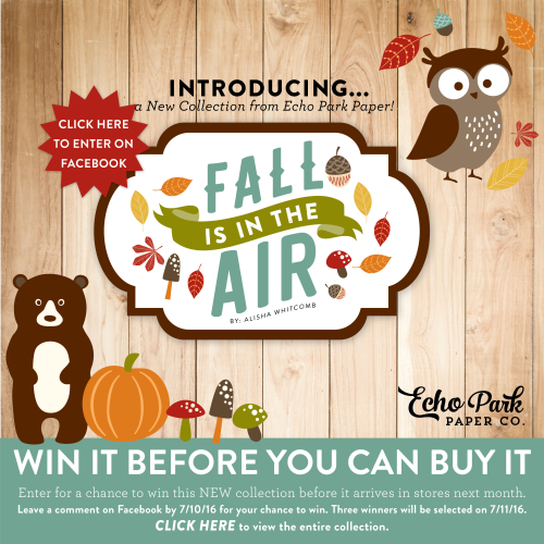 Fall_in_Air_win_it_email