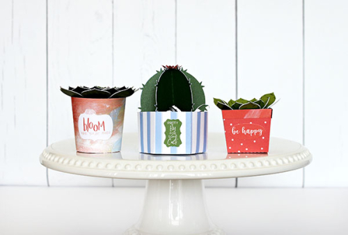 "DIY Paper Succulents by Michelle Gallant for #EchoParkPaper featuring the ""Plant Lady"" collection"
