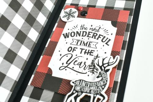 """""""Lumberjack Christmas"""" Spinner Shaker Cards by Michelle Zerull for #EchoParkPaper"""